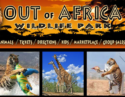 out of africa zip line